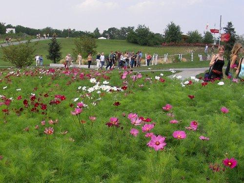 Besuch von Mitgliedern des Fördervereins, Angehörigen und Freunden auf der BuGa Gera / Ronneburg