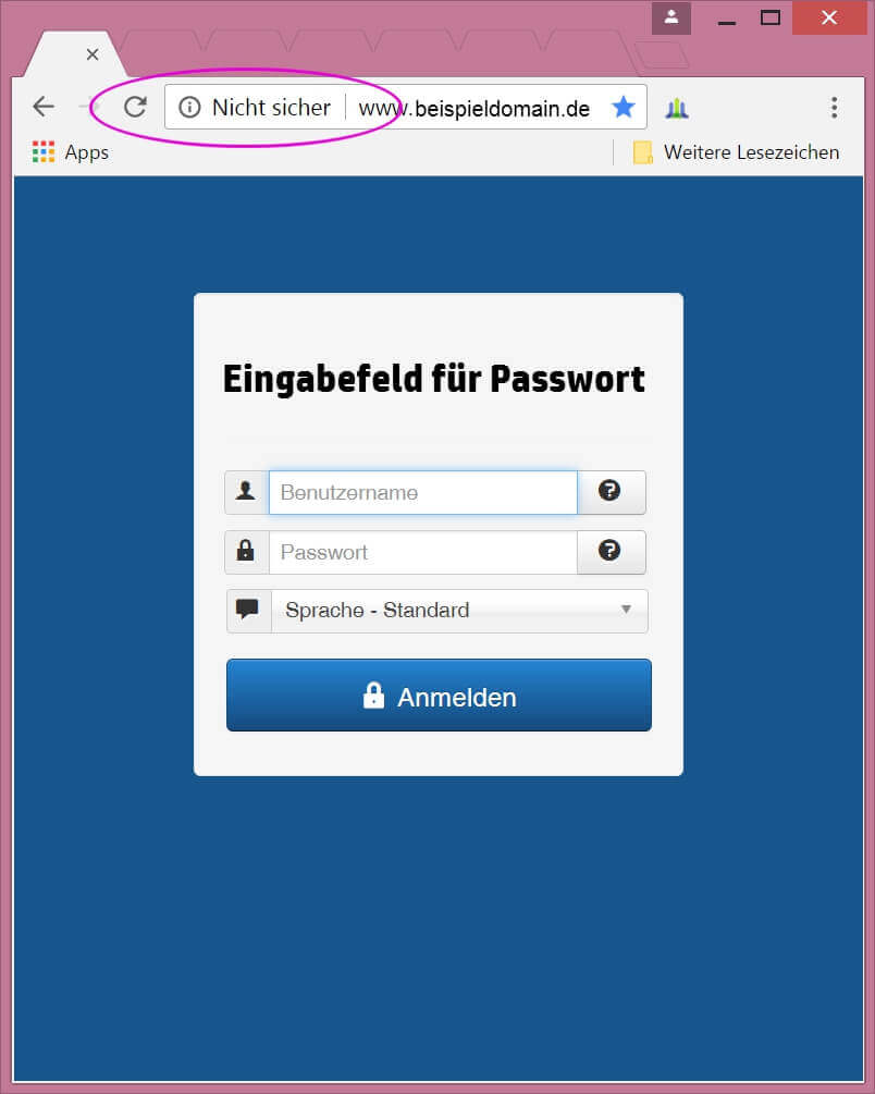 browsersicherheit crome 2017
